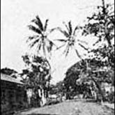 Early Lahaina